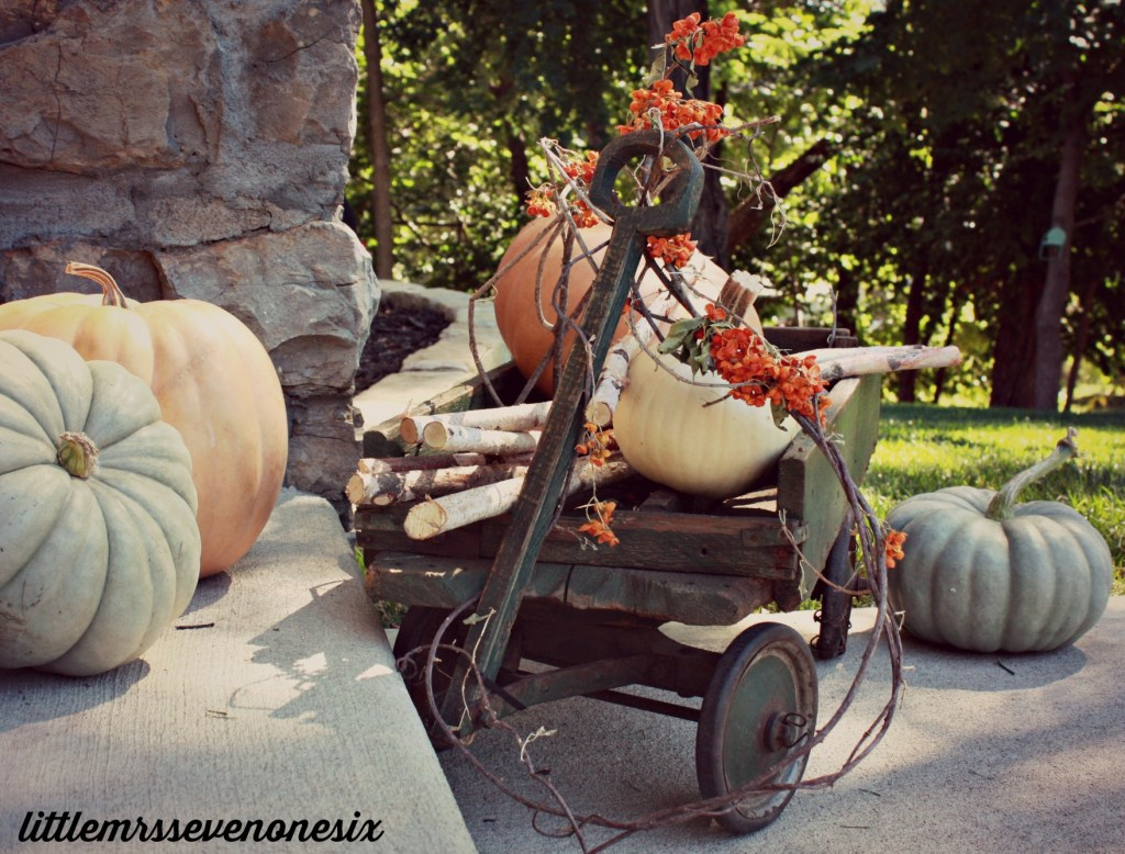 Fall pumpkin saving solution