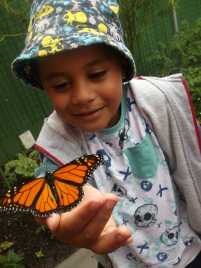 butterfly child explore learning orange hat science kid