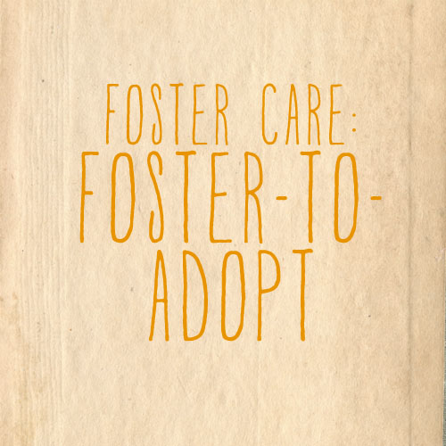 fostertoadopt