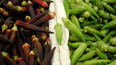 Okra by  Katherine Martinelli via flickr