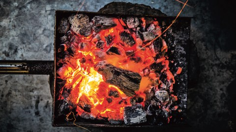 humans harnessing fire