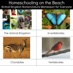 Animal Kingdom Nomenclature Montessori for Everyone