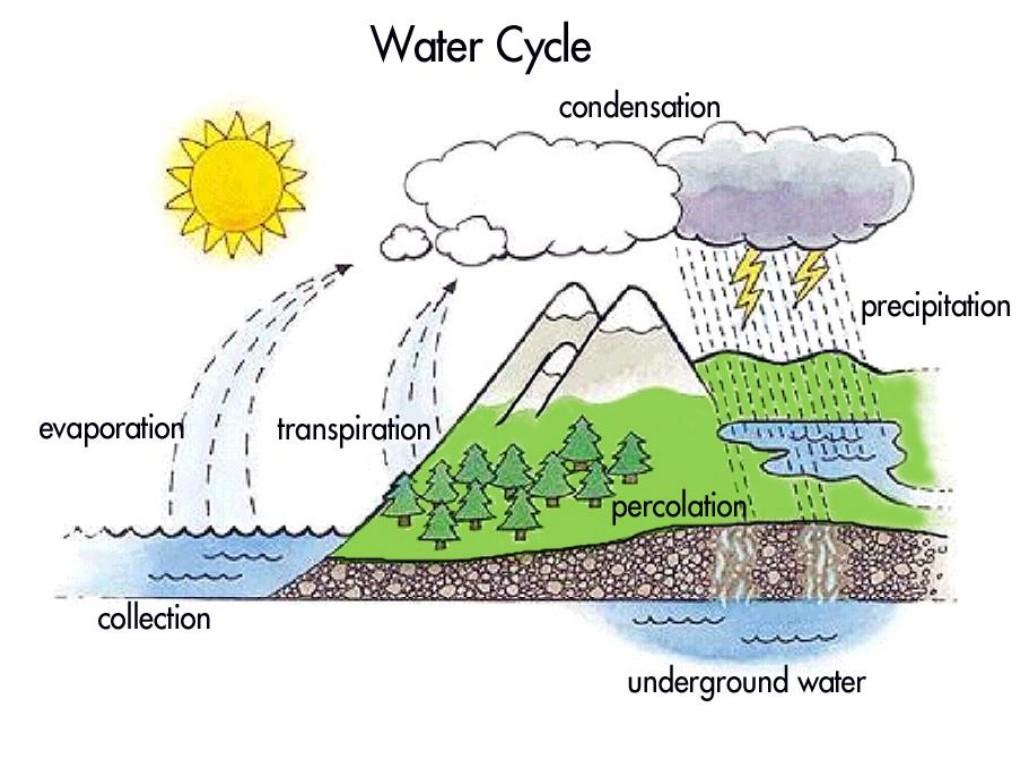 Water Cycle Worksheet For Kindergarten Kindergarten Water Cycle – Water Cycle Worksheet Middle School