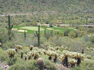 Stunning Views at DC Ranch's Silverleaf Community in Scottsdale AZ