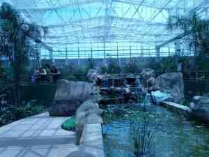 Butterfly Wonderland Butterfly Room Scottsdale AZ