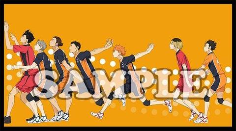 「ハイキュー!!」BD&DVDアニメイト特典収納BOX絵柄2種類が公開!!烏野と音駒、青葉城西メンバーが登場!!