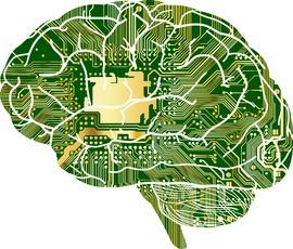 DARPA「脳とコンピューターを直結する研究に6500万ドルを出す」