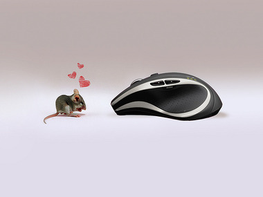mousejpg