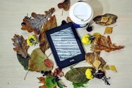 電子書籍を「利用したい」と考える人は36%。読売世論調査