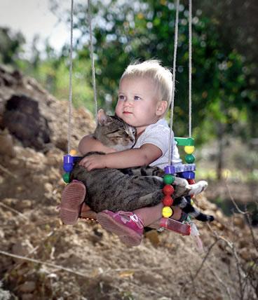 猫と赤ちゃん44