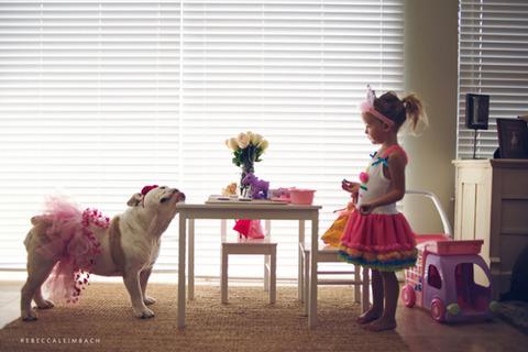 犬と赤ちゃん52