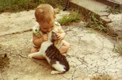 猫と赤ちゃん46