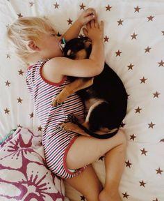 犬と赤ちゃん54