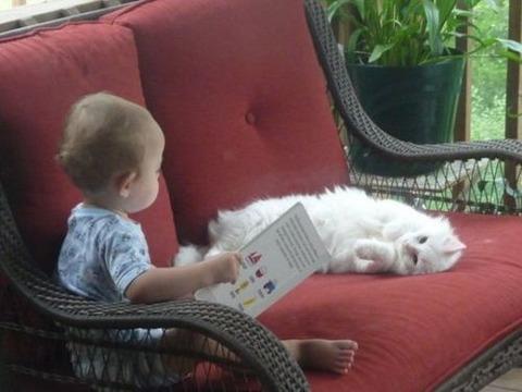 猫と赤ちゃん29