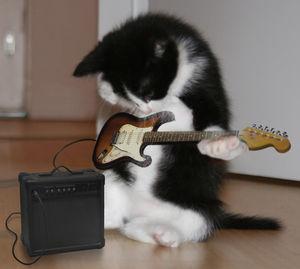 音楽の知識があれば音楽をもっと楽しく聞けるようになる?