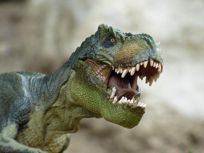 tyrannosaurus-855188_960_720
