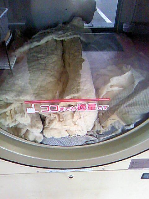 【画像あり】コインランドリーで布団丸洗いしたらとんでもないことになった……