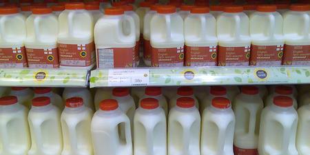 牛乳は本当は体に悪いみたいな話を聞いてビックリしたんだが