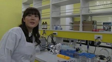 新しい万能細胞作製に成功 iPS細胞より簡易 理研 また日本人がノーベル賞かよwww
