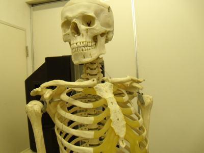 【中国】 3Dプリンタで出力した骨 約40人の患者への移植に成功