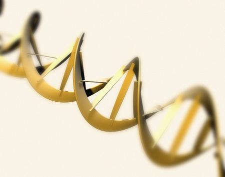 【出生前診断】ダウン症の男児を「異常なし」 函館の医院を提訴 (´・ω・`)