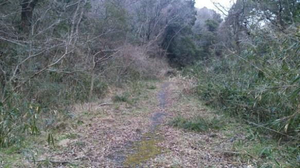 【閲覧注意】暇なので心霊スポットを散歩してきたwwwww(画像あり)