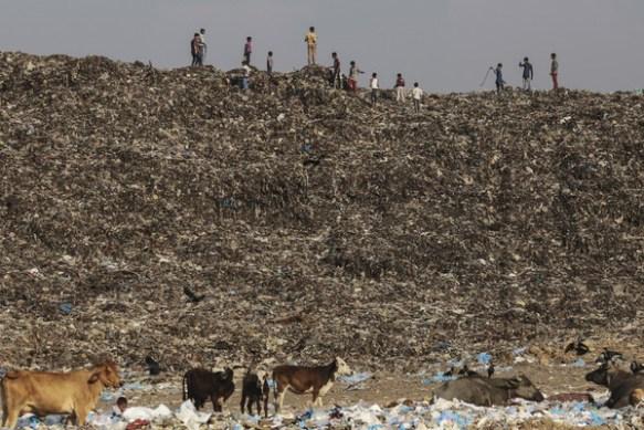 インド最大の都市「ムンバイ」の写真をご覧くださいwwwwwwww