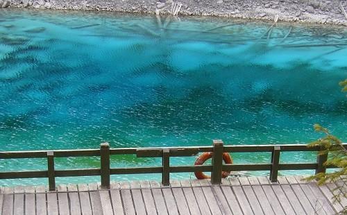 ブス「助けてぇええええ!!!!」 ←池で溺れてる、周りにはおまえしかいない…どうするよ?