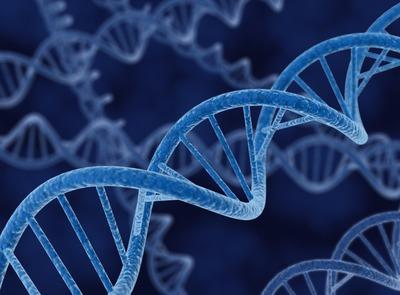 遺伝と環境で人間決まるんだよね う~む