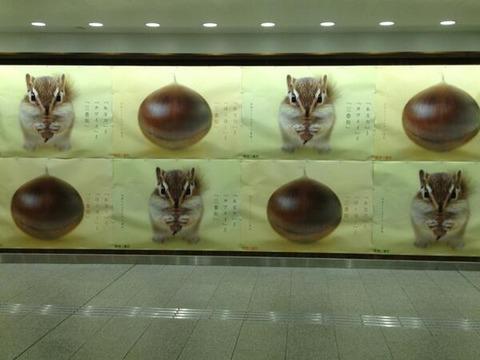【画像】阪急梅田の広告wwwwwww