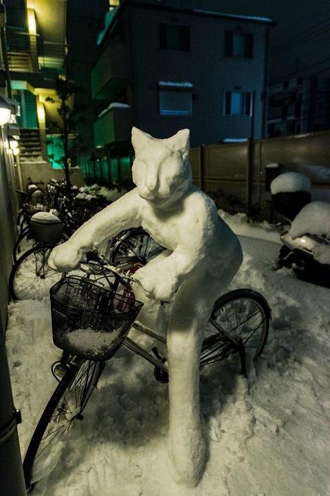 【画像あり】 自分の自転車がこんなことになってたら、お前らどうする?(´・ω・`)