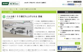 茨城・鉾田の海岸にイルカ約150頭打ち上げられる