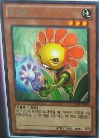 【遊戯王TCGフラゲ】韓国版LVALのワールドプレミア枠で植物族『hula bot』、通常罠『Planck-Scale』が収録決定!