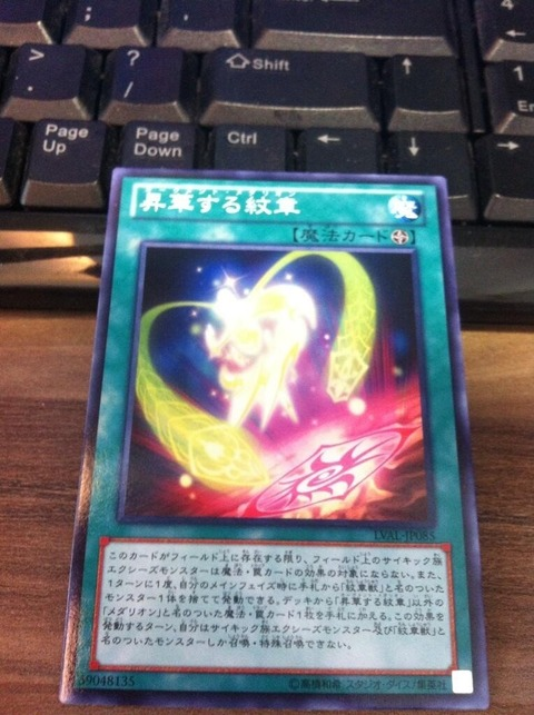 【遊戯王OCG】的確に強化された紋章獣