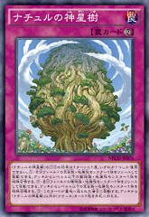 【遊戯王OCG】NECH 永続罠『ナチュルの神星樹』画像