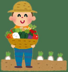 【野菜】キャベツ3・1倍、レタス3・5倍、ダイコン2・7倍、ハクサイ1・6倍…高値続く