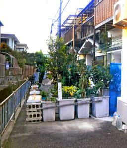 【大阪】通行人を包丁で威嚇…自宅前の道を植木鉢で塞いだキチガイ夫婦を逮捕