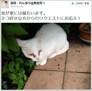 蓮舫に飼い猫虐待の疑い → 『猫に日本名をつけて苛めている』説が浮上してネット民震撼