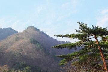 韓国のハイキング、「山中で肉を焼く」など登山客のマナー違反で台無しになる例が後絶たず