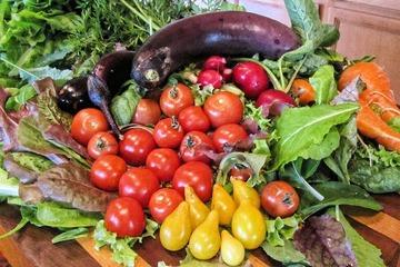 完全菜食主義を子どもに強要する親に禁錮刑を…イタリアで法案提出