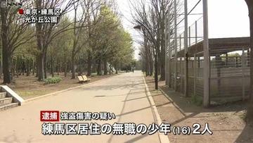 わずか1時間の間に高齢者7人を襲撃、合計4300円を奪った少年2人を逮捕…東京・光が丘公園