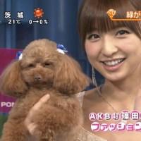 【悲報】 篠田麻里子の6年前が今と別人wwwwwwwwwww(画像あり)