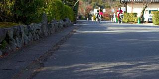 カメラ持って京都の嵐山を散歩してきた