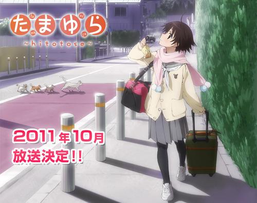 h1_tv_kokuti3 (1)