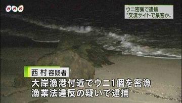 【北海道】「ウニ、アワビ採り放題」 SNS告知で有料イベント開催 → 密漁の現行犯で逮捕