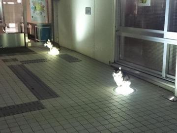 【画像】ネコA「さみぃな」 ネコB「ああ」 ネコA「これ良くね?」 ネコB「暖かいな」