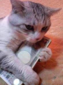 【和歌山】拾った財布に30万円、届け出なかった疑い 男を逮捕
