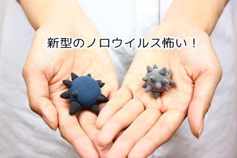 【要注意】新型ノロウィルス大流行の恐れ!手洗いやうがいなどを怠らずに!
