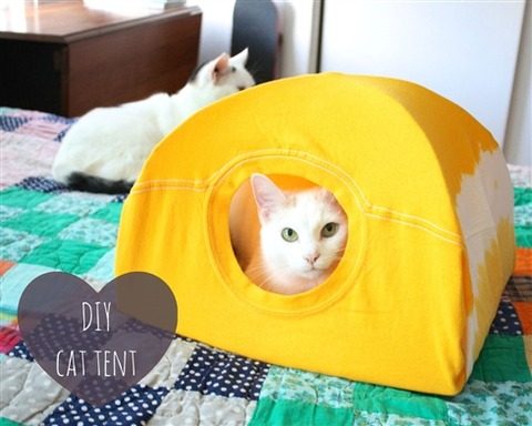 5分で簡単に作れる猫用テントが顔がひょっこりかわいいと話題!