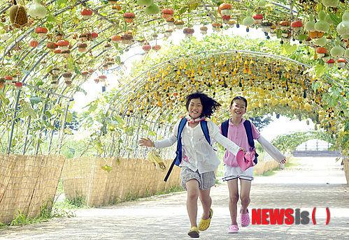 【韓国】忠州のカボチャ、今年も日本へ輸出